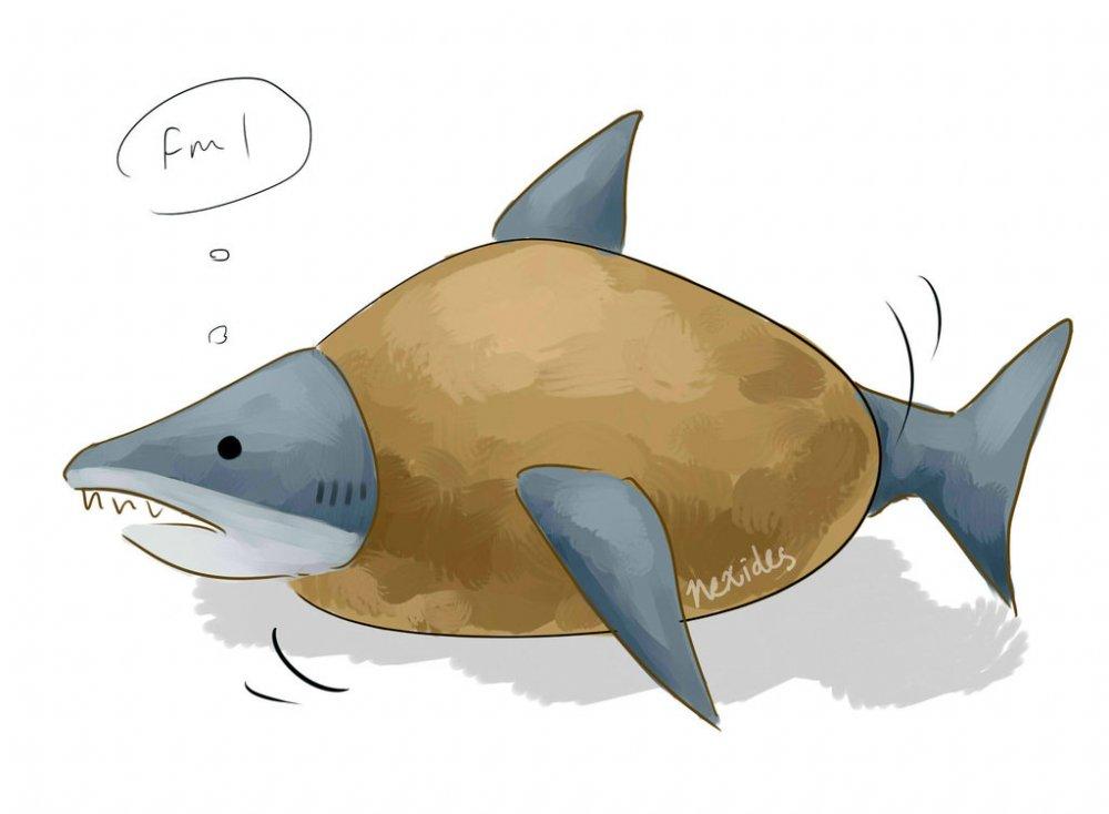 potato_shark_by_nexides-d7enqqp.jpg