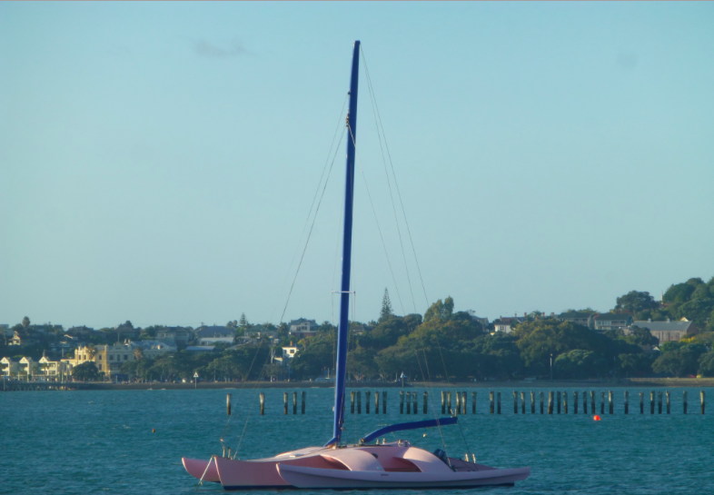 Pink Tri in NZ.png