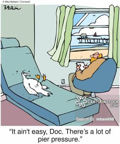 animals-therapy-pier-peer_preasure-birds-psychiatrist-mban650_low.jpg
