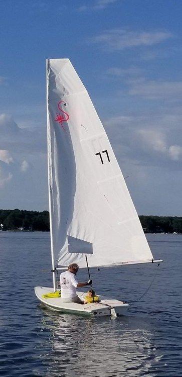 TorchedFlamingo-sail-v3.jpg