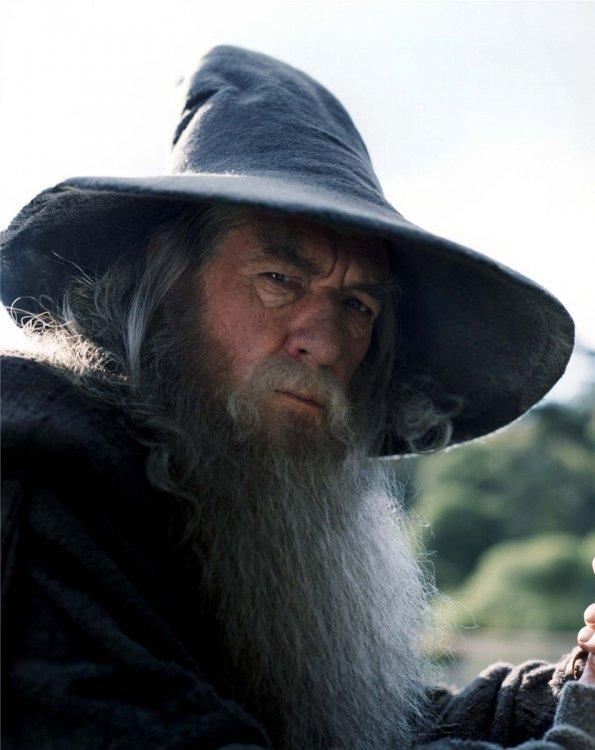 Gandalf_the_Grey.jpg