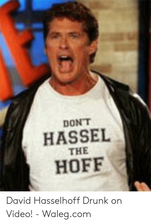 dont-hassel-the-hoff-david-hasselhoff-drunk-on-video-54242513.png