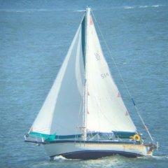 Cruiser2B