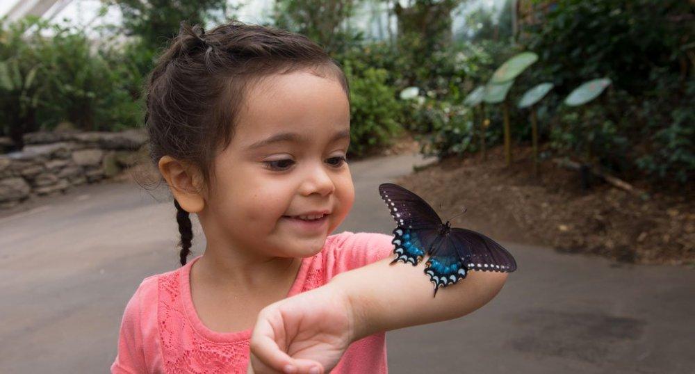 Julie-Larsen-Maher_7411_Visitors-and-Children_BUG_BZ_08-06-14.jpg