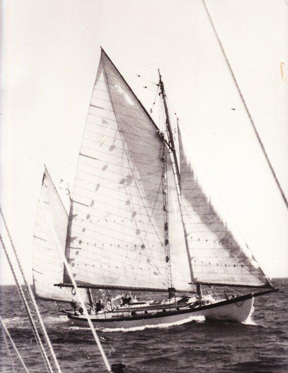Thetis1961Eleuthera.jpg