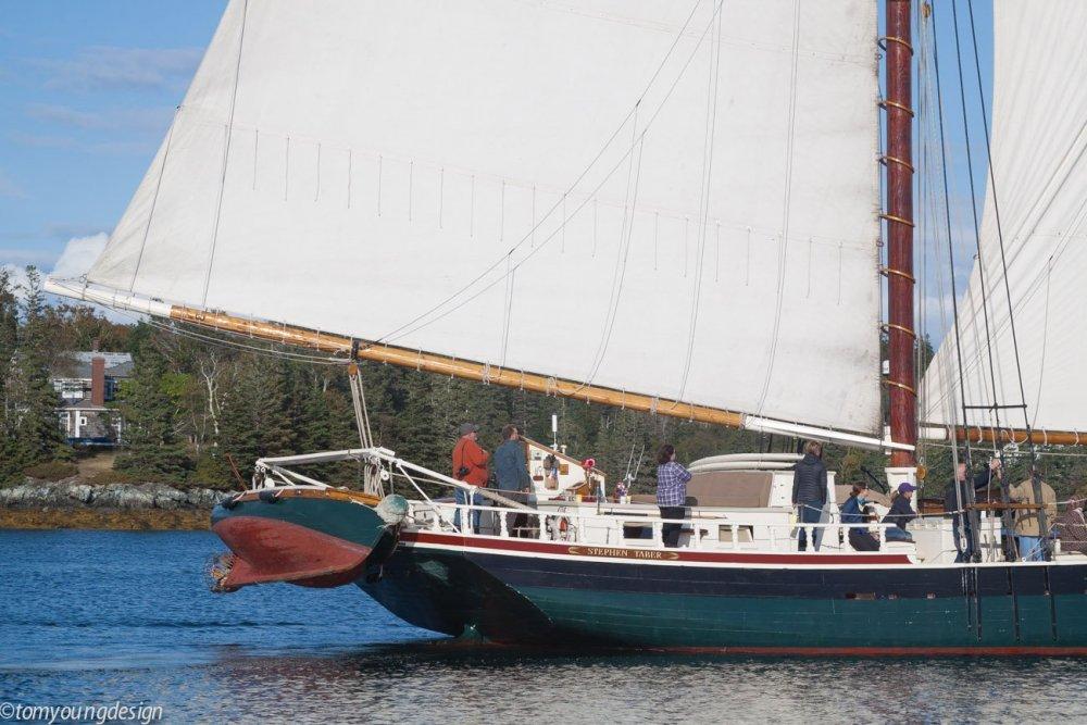55947444_Tabersternyawlboat.thumb.jpg.41deb404040b2348957b2d2ddef3381c.jpg