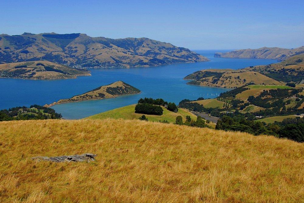 1200px-New_Zealand_-_Canterbury_Plains_-_Akaroa.thumb.jpg.80c8a654f37b46647665388b87274680.jpg