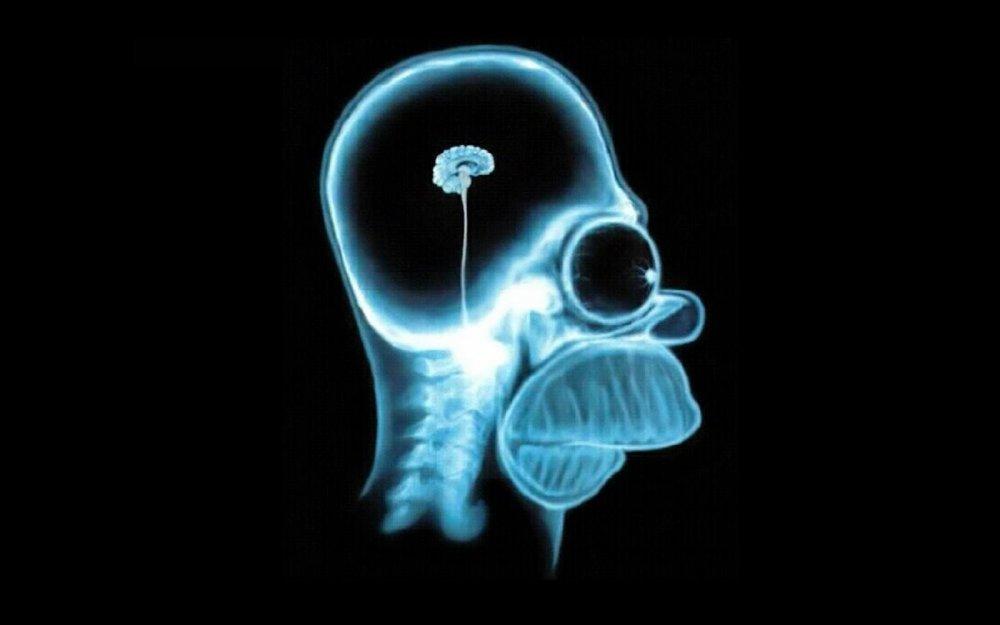 large.brain-homer-simpson-e1362669096254.jpg.271a2ce5115bf13e2af30d628520f89d.thumb.jpg.604a5282f7f07fa19ff7679d59c86015.jpg