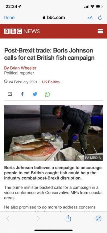 A fish 2.jpg