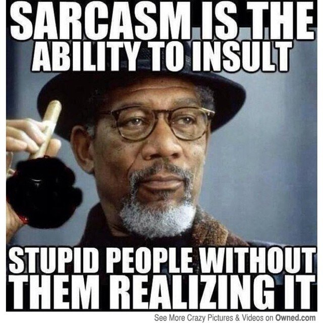 the-ability-to-insult-sarcastic-memes.jpg
