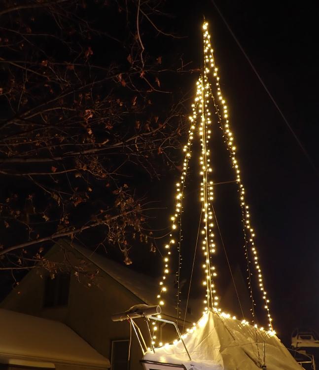 lights.thumb.png.65d224ed24d383a139aab76453fcedc2.png