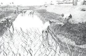 images-1.jpg