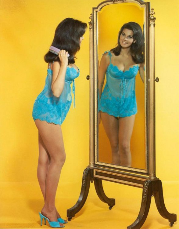 Raquel-Welch-The-Classic-Beauty-of-the-1960s-13.jpg