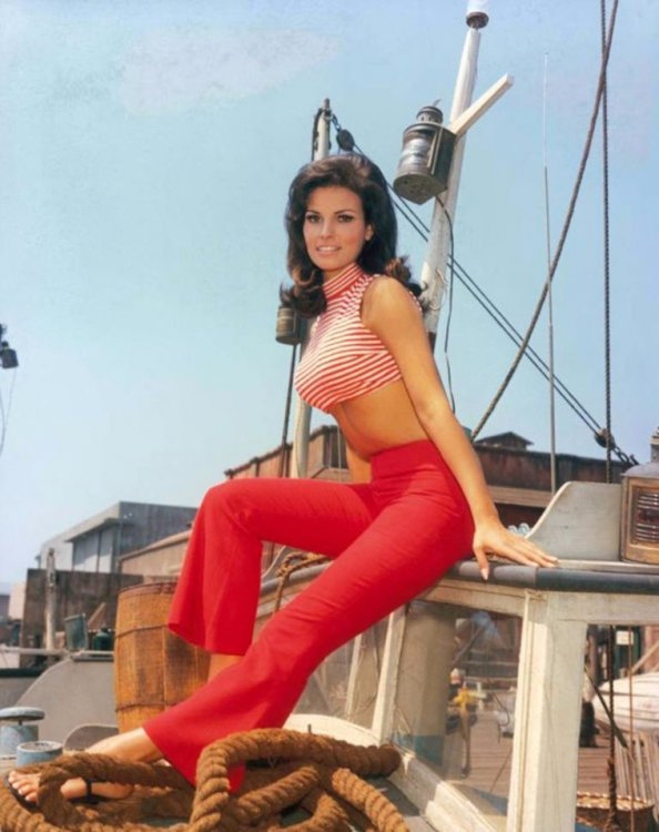 Raquel-Welch-The-Classic-Beauty-of-the-1960s-17.jpg